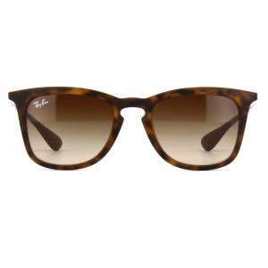 Ray-Ban 4221 Sunglasses