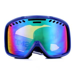 Smith Project Ski Goggles