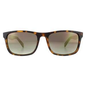 Ted Baker TB1493 Lowe Sunglasses