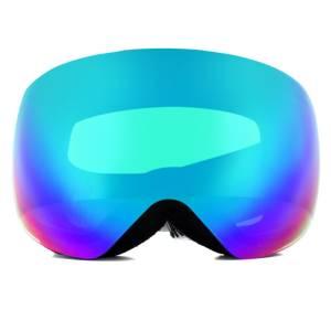 Polaroid PLD MASK 01 Ski Goggles