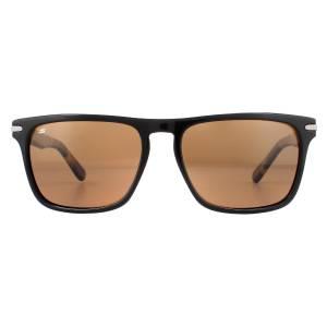 Serengeti Carlo Large Sunglasses