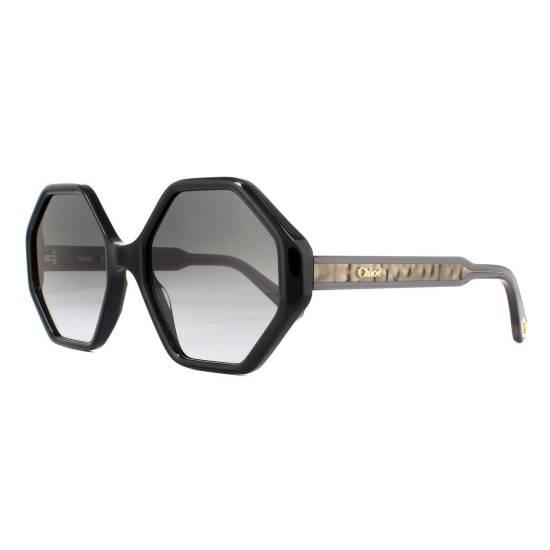 Chloe CE750S Sunglasses