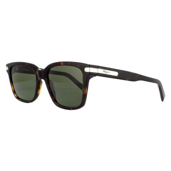 Salvatore Ferragamo SF917S Sunglasses
