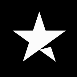 Black and White Trustpilot star for Discounted Sunglasses Excellent Trust Pilot Rating